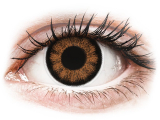 alensa.be - Contactlenzen - Bruine Sexy Brown contactlenzen - met sterkte - ColourVUE BigEyes